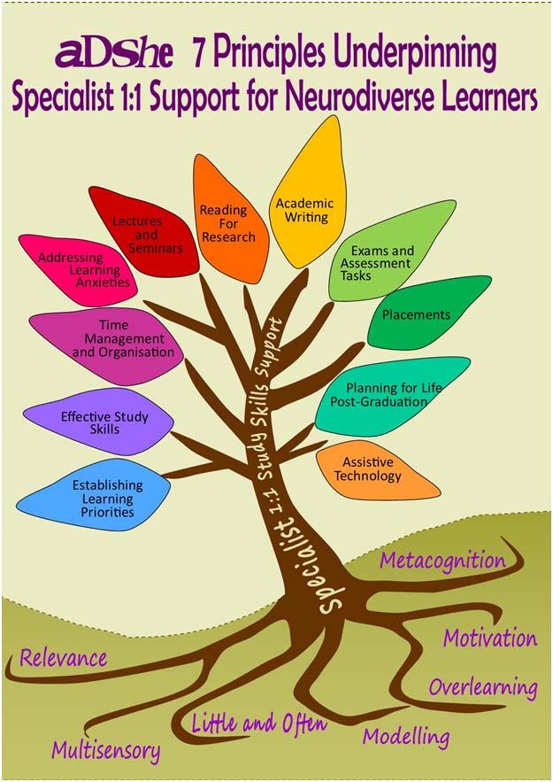 ADSHE 7 principles poster